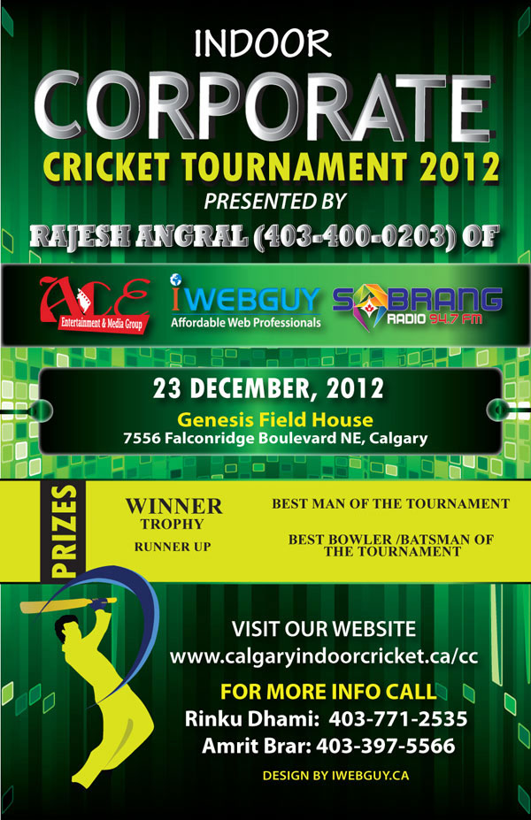 Web development website design web design website for Indoor cricket net design